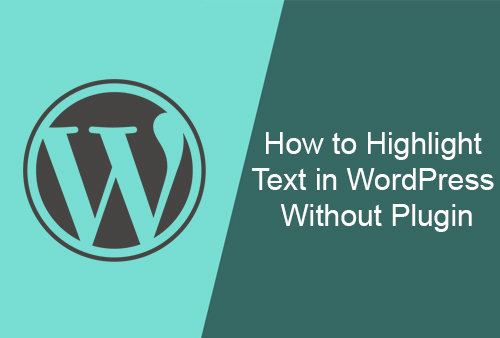 How to Highlight Text in WordPress Without Plugin