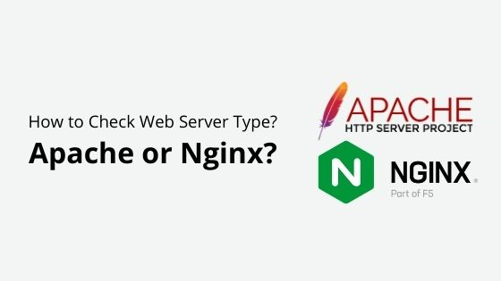 apache or nginx